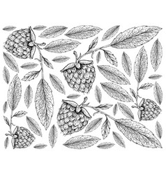 hand drawn wallpaper of golden raspberries on whit vector image