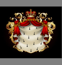 heraldic shield with a crown and royal mantle vector image