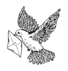 postal dove with letter engraving style vector image