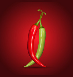 Red and green chilli peppers vector