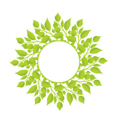 Wreath of herbal plants with thin stem and leaves vector