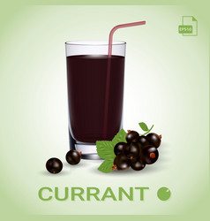 set of blackcurrant juice and fresh ripe berries vector image