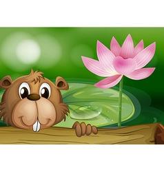 A beaver beside a pink flower vector image