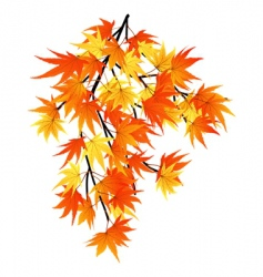 falling leaves vector image vector image