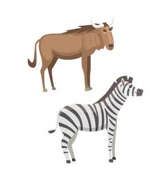African animals cartoon set zebra and vector