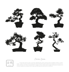 bonsai set black silhouette vector image