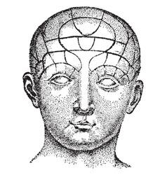 human head vintage vector image
