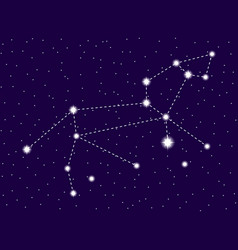 leo constellation starry night sky cluster of vector image