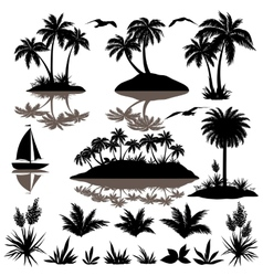Tropical set with palms silhouettes vector