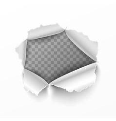 Torn hole in white sheet of paper vector image