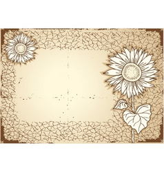 vintage sunflower vector image vector image