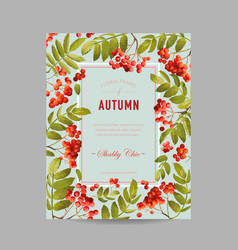 Autumn photo frame with rowan berry vector