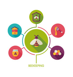 Beekeeping icon and agriculture infographics vector