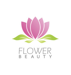 flower beauty logo vector image
