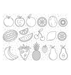 fruit graphics outline vector image