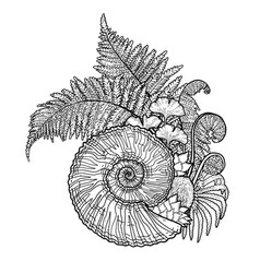 prehistoric graphic seashell and fern branches vector image