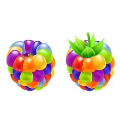 rainbow raspberry vector image