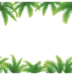 Seamless background palm leaves vector image