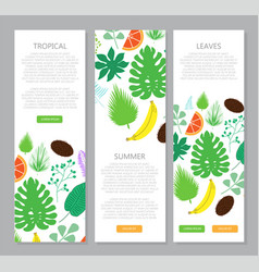 Vertical banner with tropical leaves and fruits vector