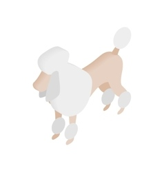 White French poodle isometric 3d icon vector