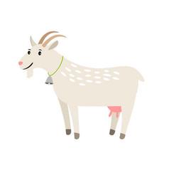 goat happy white goat pet isolated on vector image