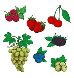 Fragrant fresh fruits and berries sketch symbols vector image