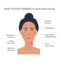 Infographic gua sha scraper facial yoga vector