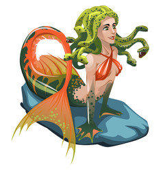 Mermaid with hair of snakes isolated on a white vector