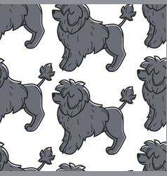 Portuguese water dog pet domestic animal seamless vector