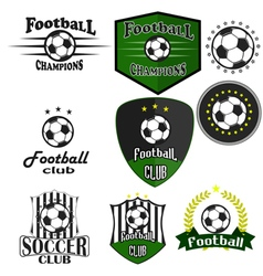 Professional sports logo football vector