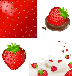strawberrys and cream vector image