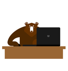 bear laptop working grizzly and notebook vector image