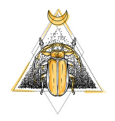 beetle over sacred geometry isolated vector image