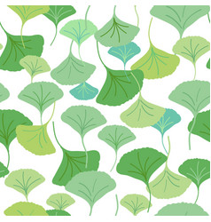 ginkgo leaves green vector image