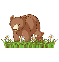 Isolated picture grizzly bears in garden vector