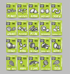 nuts and seeds price cards templates sketch vector image