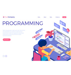 programmer developing program vector image