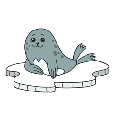 Seal on ice floes vector