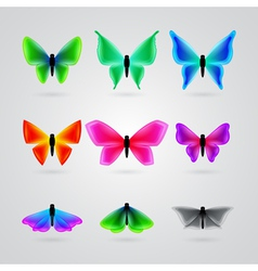 set of different color butterfly vector image