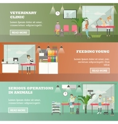 Set of veterinary care concept horizontal vector