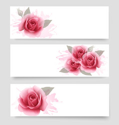 Three banners with pink roses vector