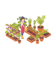 woman wearing hat and holding watering can and vector image
