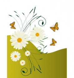 daisies and butterflies vector image