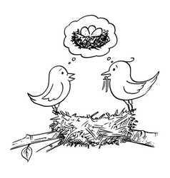 cartoon couple male and female birds vector image
