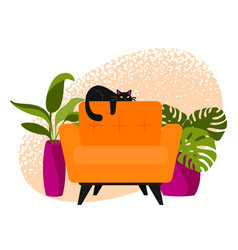 cat on armchair vector image