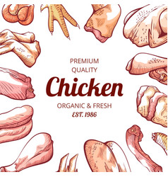 chicken meat banner shop and market adv vector image
