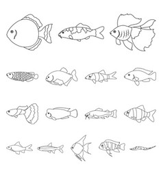 Different types of fish outline icons in set vector