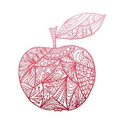 hand drawn apple vector image