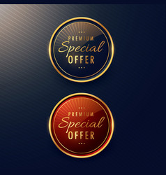 special offer label design set vector image