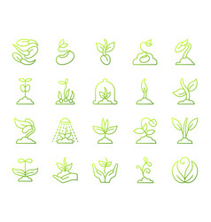 sprout simple green line icons set vector image